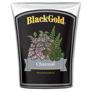 Black Gold Charcoal