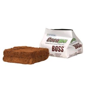 Cocogro Boss