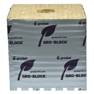 Gro-Blocks Hugo w/ Holes