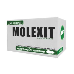 Molexit