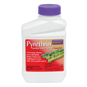 Pyrethrin Garden Insect Spray Concentrate