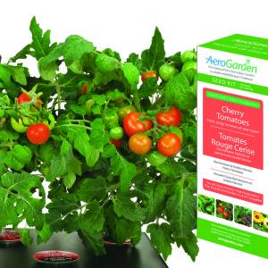 Cherry Tomato Seed Kit