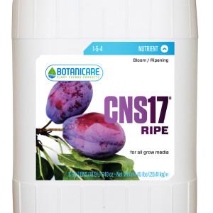 CNS17 Ripe 5 Gal