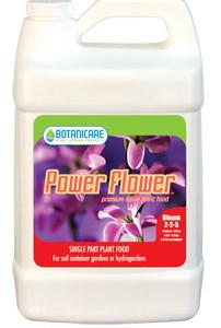 Power Flower Qt