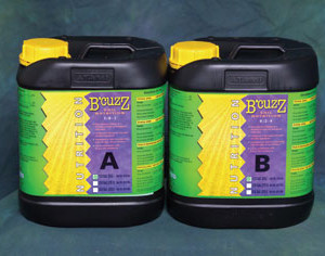 B'Cuzz Soil B Nutrition Comp.