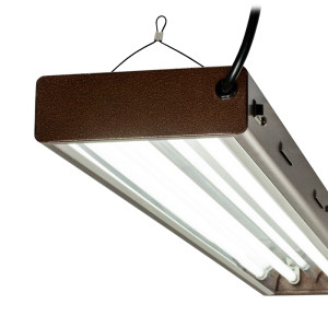 T5 Designer 4ft 2Tube fixture