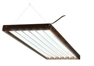 T5 Designer 4Ft 6 Tube Fixture
