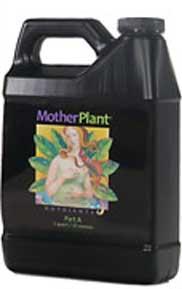 Mother Plant A Quart
