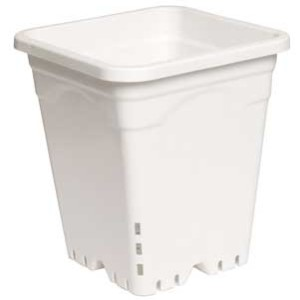 "12x12"" Square Pot White"