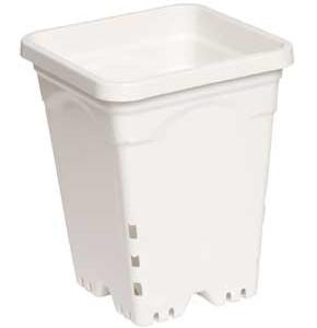 """6x6"""" Square Pot White"""