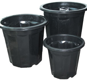 Black Plastic Planter 7 Quart
