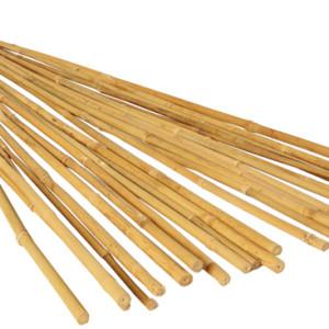 8' Natural Bamboo Stake
