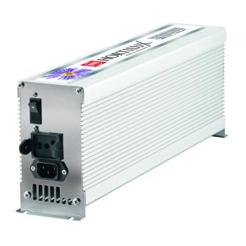 1000W E-Ballast & Lamp Combo
