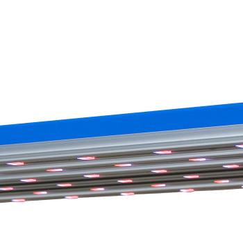 NeoSol 300W LED Plant Grow Lum