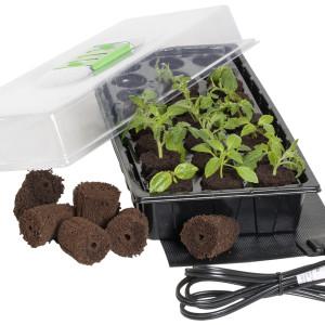 JS 24 Grow Plug Mini Germinati