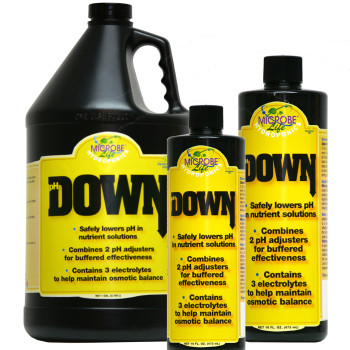 pH Down 16 oz