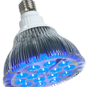 powerPAR LED Bulb-Blue 15W/E27
