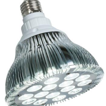 powerPAR LED Bulb-White 15W/E2