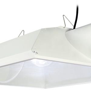 RFB8 W/ ML1000HPS Kit