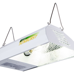 Mini Sunburst MH 100w w/ Lamp