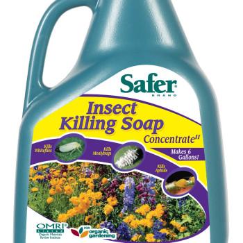 Insect Killing Soap 16oz Conc