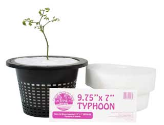 "Typhoon 10x9"""