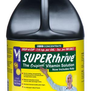 Superthrive Gal