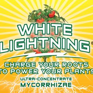 White Lightning  4 oz