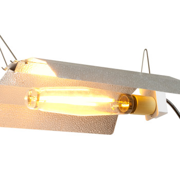 XT2AW Aluminum Wing Ref 6 Pack