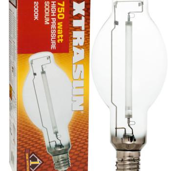 Bulb Sod 750W